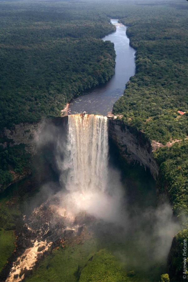 Рядом с водопадом в листьях какой то