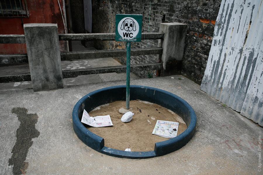 Собачий туалет