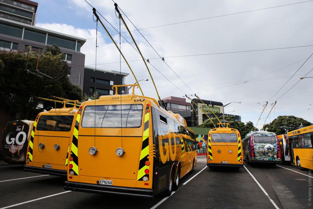австралийским ногам.  Это столица Новой Зеландии.  Тут ездят троллейбусы, на которые интересно смотреть сзади.