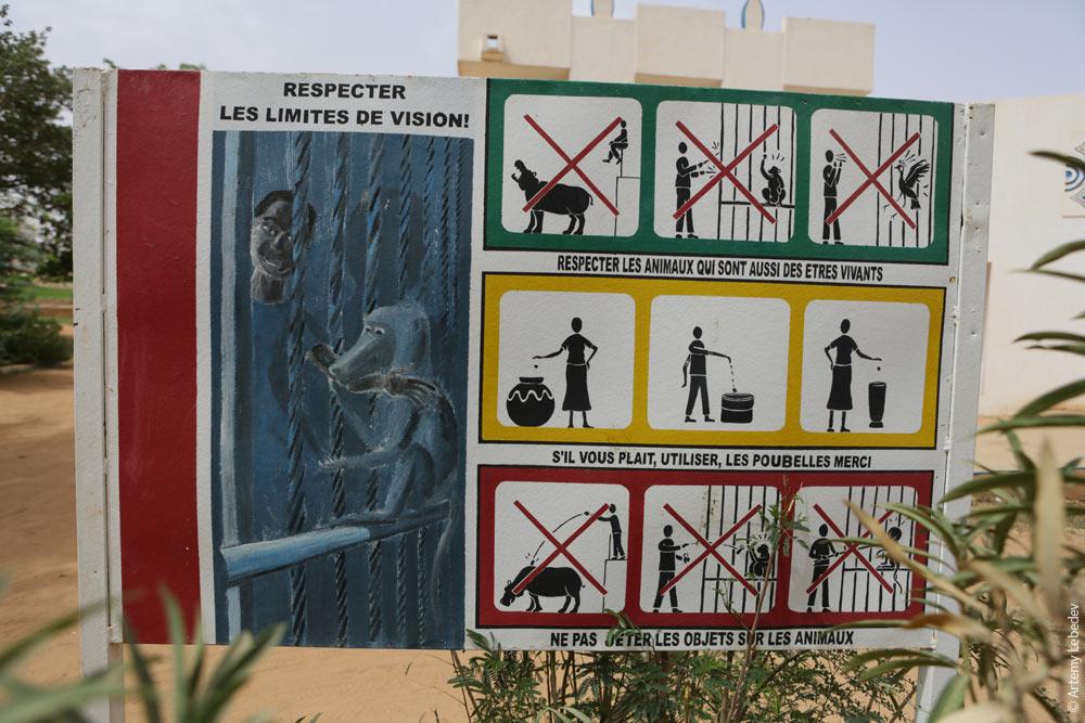 Поведение в зоопарке картинки