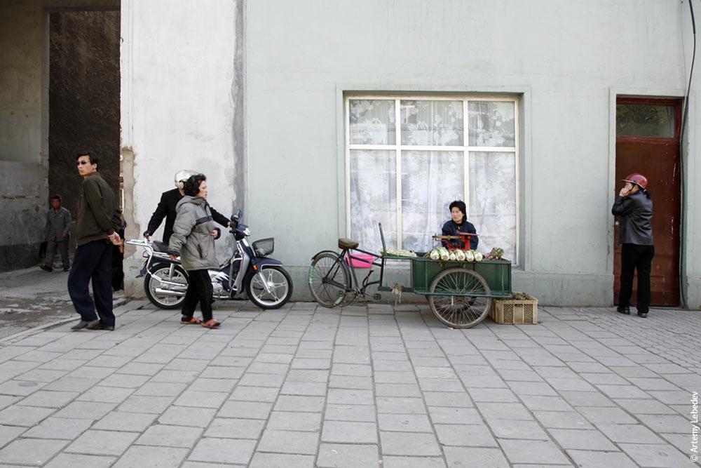 Артемиq Лебедев / Северная Корея. Часть I. Основные детали