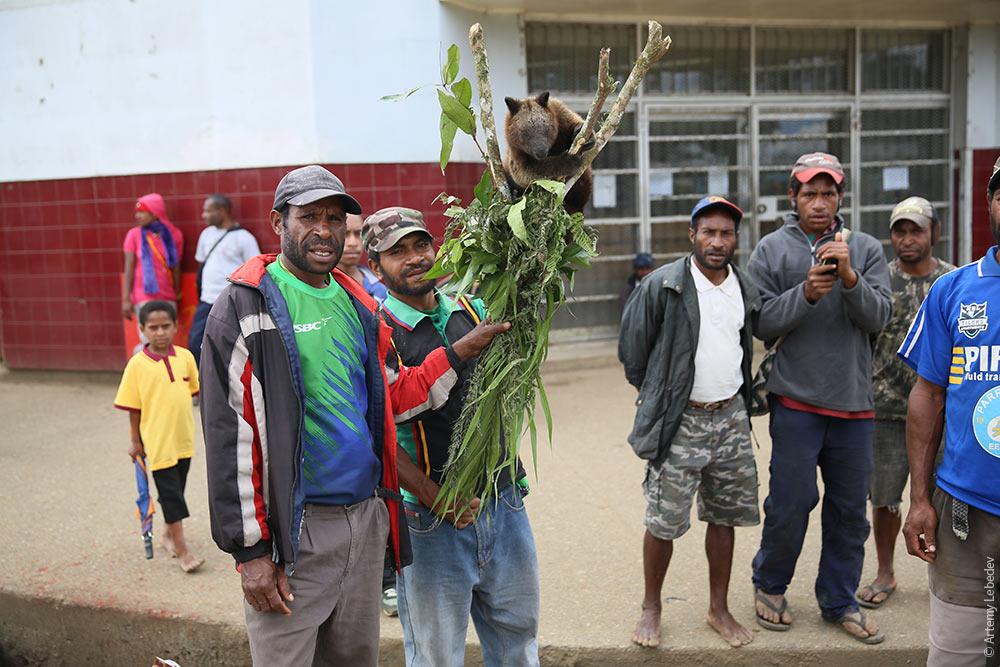 http://www.tema.ru/travel/papua-new-guinea/4F2C6191.jpg